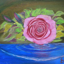 rose , 10 x 8 inch, kailash chand,10x8inch,canvas,paintings,flower paintings,oil color,GAL01639228190