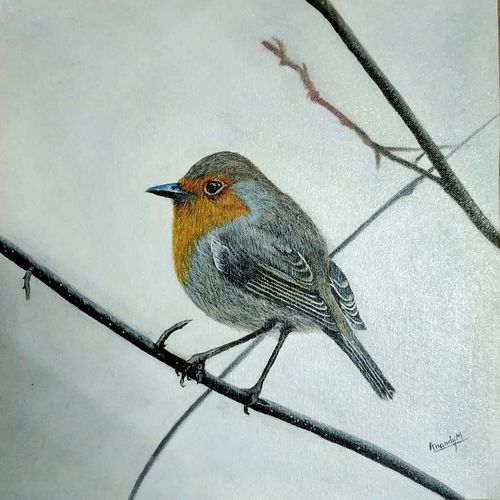 bird painting, 13 x 13 inch, anandi m,13x13inch,canvas,paintings,wildlife paintings,photorealism,paintings for living room,paintings for bedroom,paintings for office,paintings for kids room,paintings for hotel,paintings for school,oil color,GAL0307728303