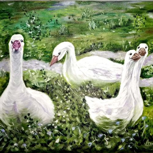 duck painting, 25 x 17 inch, anandi m,25x17inch,canvas,paintings,abstract paintings,wildlife paintings,nature paintings   scenery paintings,animal paintings,paintings for dining room,paintings for living room,paintings for bedroom,paintings for office,paintings for kids room,paintings for hotel,paintings for school,paintings for hospital,oil color,GAL0307728319