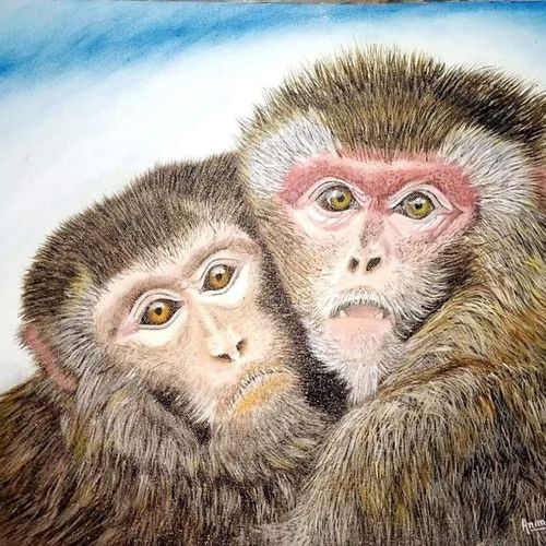 monkey painting, 19 x 15 inch, anandi m,19x15inch,canvas,paintings,wildlife paintings,expressionism paintings,photorealism paintings,photorealism,animal paintings,realistic paintings,paintings for living room,paintings for bedroom,paintings for office,paintings for kids room,paintings for hotel,paintings for kitchen,paintings for school,oil color,GAL0307728321