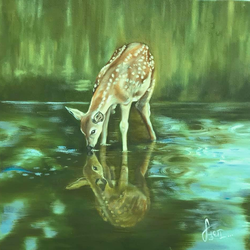 a beautiful deer, 18 x 18 inch, sudha sarawagi ,18x18inch,canvas,paintings,nature paintings | scenery paintings,oil color,GAL0342928344