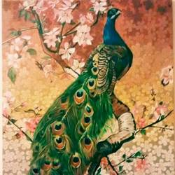 indian peacock, 24 x 30 inch, geetu thakur,24x30inch,canvas,wildlife paintings,nature paintings | scenery paintings,realistic paintings,paintings for dining room,paintings for living room,paintings for bedroom,paintings for office,paintings for hotel,paintings for school,paintings for dining room,paintings for living room,paintings for bedroom,paintings for office,paintings for hotel,paintings for school,acrylic color,GAL01726128466