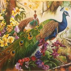 jungle peacocks , 36 x 30 inch, geetu thakur,36x30inch,canvas,paintings,expressionism paintings,impressionist paintings,contemporary paintings,paintings for dining room,paintings for living room,paintings for bedroom,paintings for office,paintings for hotel,paintings for hospital,oil color,GAL01726128470