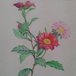 flower art, 8 x 11 inch, geetha murugesan,8x11inch,thick paper,art deco drawings,pencil color,GAL01799229153