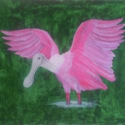 birds painting - spoonbill bird, 16 x 12 inch, geetha murugesan,16x12inch,canvas board,paintings,wildlife paintings,acrylic color,GAL01799229258