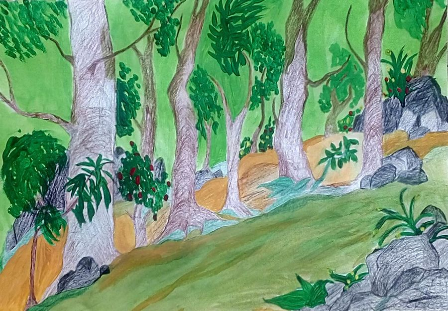 forest, 9 x 11 inch, mrs. kalyani lahon,wildlife paintings,paintings for living room,paper,poster color,9x11inch,GAL06572926