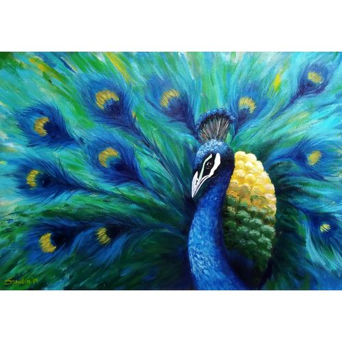 peacock, 23 x 16 inch, sheetal bhatia,23x16inch,canvas,paintings,animal paintings,paintings for dining room,paintings for living room,paintings for bedroom,paintings for office,paintings for kids room,paintings for hotel,paintings for kitchen,paintings for school,paintings for hospital,acrylic color,GAL01681929615