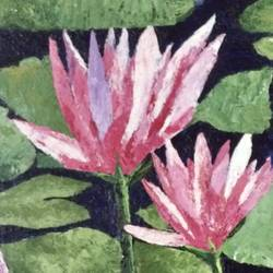 water lillies, 15 x 30 inch, aditi mitra,15x30inch,canvas,paintings,flower paintings,paintings for dining room,paintings for living room,paintings for bedroom,paintings for office,paintings for bathroom,paintings for hotel,paintings for dining room,paintings for living room,paintings for bedroom,paintings for office,paintings for bathroom,paintings for hotel,acrylic color,GAL01820629633