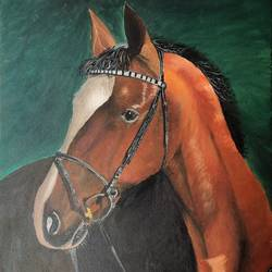 horse, 24 x 30 inch, bindu revanna,24x30inch,canvas,paintings,wildlife paintings,nature paintings | scenery paintings,realism paintings,animal paintings,horse paintings,paintings for living room,paintings for bedroom,paintings for office,paintings for hotel,acrylic color,GAL01840429842