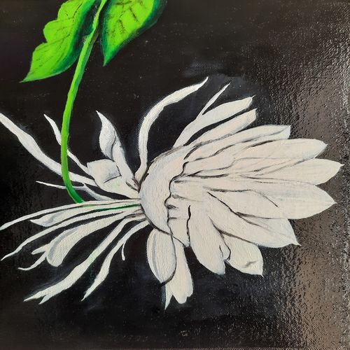 queen of night flower , 15 x 12 inch, rupa patel,15x12inch,canvas,paintings,flower paintings,modern art paintings,nature paintings | scenery paintings,contemporary paintings,realistic paintings,paintings for dining room,paintings for living room,paintings for bedroom,paintings for office,paintings for hotel,paintings for kitchen,paintings for school,paintings for hospital,paintings for dining room,paintings for living room,paintings for bedroom,paintings for office,paintings for hotel,paintings for kitchen,paintings for school,paintings for hospital,oil color,GAL01734629904