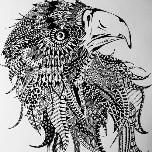 a zentangle hawk, 8 x 11 inch, ajay kumar thakur,modern drawings,paintings for office,drawing paper,ink color,8x11inch,GAL011692994