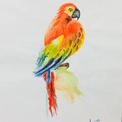 parrot with beauty, 9 x 12 inch, saurabh tripathi,9x12inch,cartridge paper,paintings,figurative paintings,watercolor,GAL01850429951