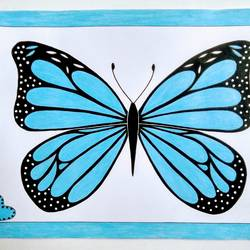 blue butterfly, 16 x 12 inch, geeta kwatra,16x12inch,ivory sheet,paintings,wildlife paintings,paintings for dining room,paintings for hotel,acrylic color,mixed media,GAL0899129965