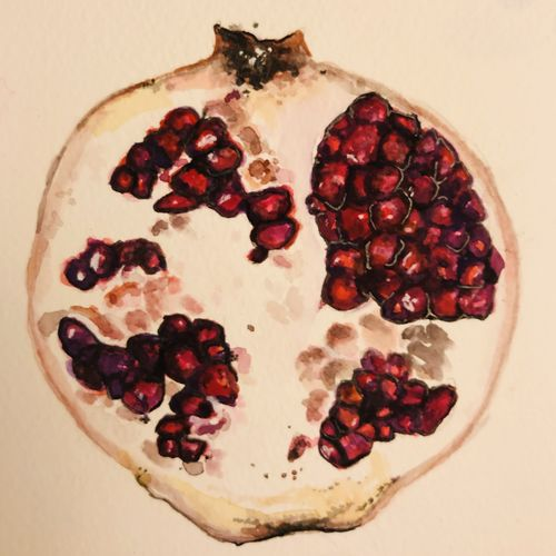 pomegranate half , 8 x 11 inch, swetha reddy,8x11inch,brustro watercolor paper,paintings,still life paintings,realistic paintings,miniature painting.,paintings for dining room,paintings for bedroom,paintings for kitchen,paintings for hospital,paintings for dining room,paintings for bedroom,paintings for kitchen,paintings for hospital,watercolor,GAL01443730071