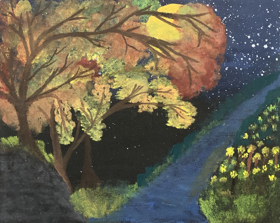 trees at night , 8 x 10 inch, apoorva  gurumurthy,8x10inch,canvas,landscape paintings,nature paintings   scenery paintings,acrylic color,GAL01867330202