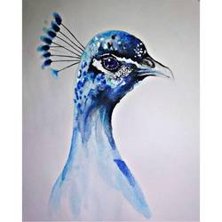 pride, 6 x 7 inch, soumya tripathi,6x7inch,thick paper,paintings,wildlife paintings,realistic paintings,paintings for dining room,paintings for living room,paintings for office,paintings for hotel,paintings for kitchen,paintings for school,natural color,poster color,paper,GAL01865530234
