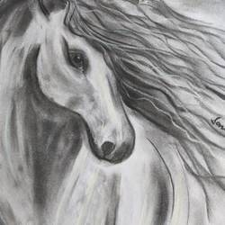 wild like a white horse, 12 x 16 inch, sonam pama,12x16inch,thick paper,paintings for dining room,paintings for living room,paintings for bedroom,abstract drawings,fine art drawings,paintings for dining room,paintings for living room,paintings for bedroom,charcoal,GAL01869630256
