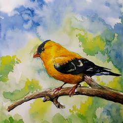 yellow bird, 11 x 16 inch, rajmohan ramamoorthi,11x16inch,brustro watercolor paper,paintings,nature paintings | scenery paintings,animal paintings,paintings for office,paintings for kids room,paintings for hotel,paintings for hospital,pen color,watercolor,GAL01816130378