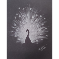 peacock inverted silhouette, 9 x 11 inch, priyanshu sharma,9x11inch,paper,drawings,art deco drawings,paintings for dining room,paintings for living room,paintings for bedroom,paintings for office,paintings for hotel,paintings for school,paintings for hospital,charcoal,GAL0973630434