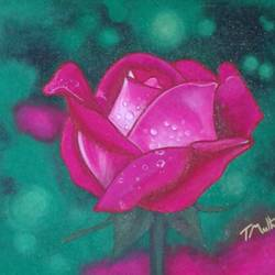 rose , 12 x 15 inch, sujitha artgallery,12x15inch,canvas board,paintings,flower paintings,paintings for living room,acrylic color,GAL049630588