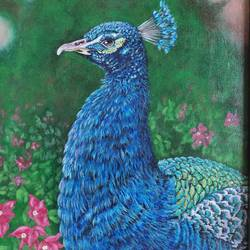 peacock in the garden, 12 x 18 inch, mrinalini shingal,12x18inch,canvas board,paintings,wildlife paintings,nature paintings | scenery paintings,animal paintings,paintings for living room,paintings for bedroom,paintings for office,paintings for living room,paintings for bedroom,paintings for office,acrylic color,GAL01898330617