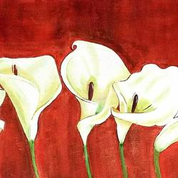 blooming calla lily, 24 x 12 inch, parul mathur,24x12inch,canvas,paintings,flower paintings,paintings for dining room,paintings for living room,paintings for bedroom,paintings for office,paintings for hotel,paintings for school,oil color,GAL01914130696
