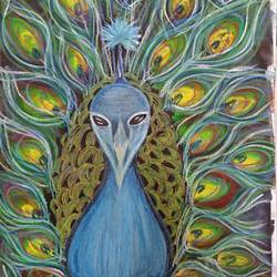 peacock , 13 x 19 inch, arushi chaudhary,13x19inch,ivory sheet,paintings,wildlife paintings,multi piece paintings,portrait paintings,art deco paintings,acrylic color,mixed media,pastel color,GAL01902730742
