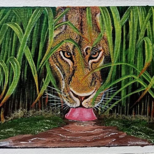 lioness, 12 x 10 inch, umeshwar rao k,12x10inch,canvas,paintings,wildlife paintings,paintings for dining room,paintings for living room,paintings for bedroom,paintings for office,paintings for bathroom,paintings for kids room,paintings for hotel,acrylic color,GAL01924630812