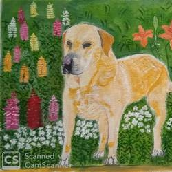 the dog in the garden, 17 x 10 inch, abhik mahanti,17x10inch,canvas,paintings,wildlife paintings,nature paintings | scenery paintings,acrylic color,GAL0404430916