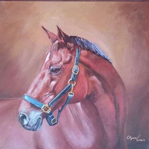 horse portrait, 20 x 24 inch, sankar c,20x24inch,canvas board,paintings,wildlife paintings,figurative paintings,modern art paintings,portrait paintings,nature paintings | scenery paintings,realism paintings,animal paintings,contemporary paintings,horse paintings,paintings for dining room,paintings for living room,paintings for bedroom,paintings for office,paintings for kids room,paintings for hotel,paintings for kitchen,paintings for school,paintings for hospital,acrylic color,GAL01935030958