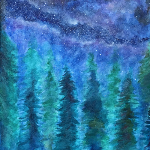 starry forest, 16 x 20 inch, sneha singh,16x20inch,canvas,paintings,landscape paintings,paintings for dining room,paintings for living room,paintings for bedroom,paintings for office,paintings for bathroom,paintings for kids room,paintings for hotel,paintings for kitchen,paintings for school,paintings for hospital,acrylic color,GAL01445330989