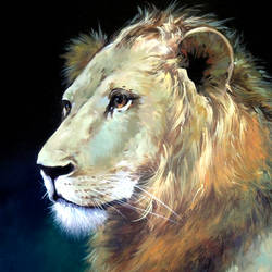 lion, 36 x 24 inch, kanna achariya,36x24inch,canvas,paintings,wildlife paintings,figurative paintings,nature paintings | scenery paintings,photorealism paintings,photorealism,realism paintings,animal paintings,realistic paintings,paintings for dining room,paintings for living room,paintings for bedroom,paintings for office,paintings for hotel,paintings for school,acrylic color,GAL01926431086