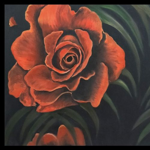 red rose, 24 x 18 inch, akila devi,24x18inch,canvas,paintings,flower paintings,art deco paintings,expressionism paintings,paintings for dining room,paintings for living room,paintings for bedroom,paintings for office,paintings for bathroom,paintings for kids room,paintings for hotel,paintings for kitchen,paintings for school,paintings for hospital,oil color,GAL01944831109