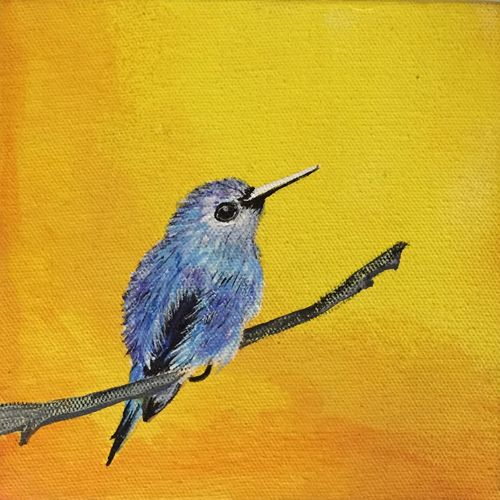 the blue bird, 6 x 6 inch, bijal panchmatia,6x6inch,canvas,paintings,wildlife paintings,nature paintings | scenery paintings,paintings for living room,paintings for office,paintings for bathroom,paintings for kids room,paintings for hotel,paintings for school,paintings for living room,paintings for office,paintings for bathroom,paintings for kids room,paintings for hotel,paintings for school,acrylic color,GAL01961131275