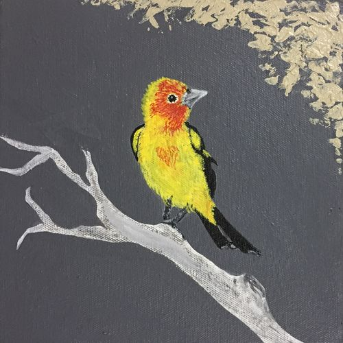 the yellow, 8 x 8 inch, bijal panchmatia,8x8inch,canvas,paintings,wildlife paintings,nature paintings | scenery paintings,paintings for living room,paintings for bedroom,paintings for office,paintings for bathroom,paintings for kids room,paintings for hotel,paintings for school,acrylic color,GAL01961131276