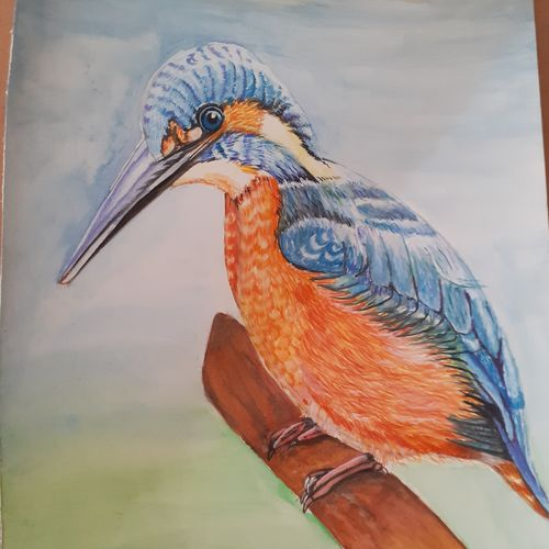 kingfisher , 11 x 15 inch, surabhi  singh ,11x15inch,thick paper,wildlife paintings,nature paintings | scenery paintings,art deco paintings,animal paintings,paintings for living room,paintings for hotel,paintings for school,paintings for living room,paintings for hotel,paintings for school,poster color,GAL01950531286