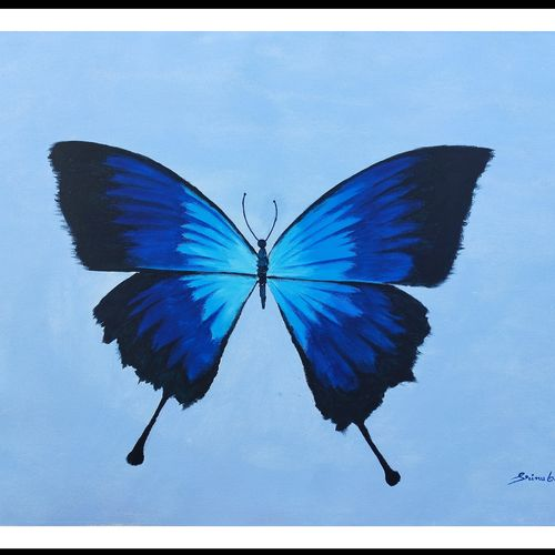 blue morpho butterfly, 34 x 24 inch, srinu badri,34x24inch,canvas,paintings,modern art paintings,nature paintings | scenery paintings,paintings for dining room,paintings for living room,paintings for bedroom,paintings for office,paintings for kids room,paintings for school,paintings for dining room,paintings for living room,paintings for bedroom,paintings for office,paintings for kids room,paintings for school,acrylic color,GAL01289931444
