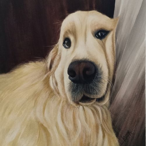 pet, 14 x 16 inch, kumar ranadive,14x16inch,thick paper,paintings,animal paintings,acrylic color,GAL01956931527