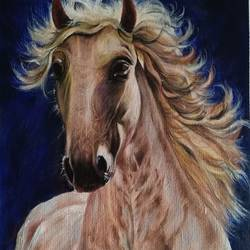 horse, 14 x 16 inch, kumar ranadive,14x16inch,thick paper,paintings,horse paintings,acrylic color,GAL01956931530