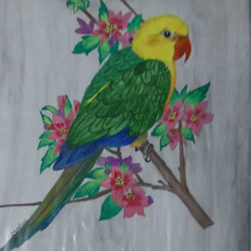 parrot, 11 x 15 inch, nikhil kamble,animal paintings,paintings for living room,drawing paper,acrylic color,11x15inch,GAL012123157
