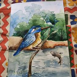 kingfisher, 8 x 15 inch, subham roy,8x15inch,thick paper,paintings,wildlife paintings,paintings for office,mixed media,GAL01992531574