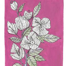 bougainville, 6 x 9 inch, parijat joshi singhal,6x9inch,drawing paper,art deco drawings,illustration drawings,minimalist drawings,acrylic color,ink color,pen color,paper,GAL02000231710