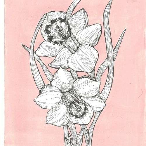daffodils, 8 x 11 inch, parijat joshi singhal,8x11inch,drawing paper,paintings for dining room,paintings for living room,paintings for bedroom,paintings for bathroom,paintings for kitchen,paintings for hospital,illustration drawings,minimalist drawings,modern drawings,paintings for dining room,paintings for living room,paintings for bedroom,paintings for bathroom,paintings for kitchen,paintings for hospital,acrylic color,ink color,mixed media,pen color,paper,GAL02000231713