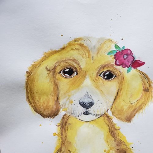 dog, 12 x 17 inch, ayush dhanda,12x17inch,thick paper,paintings,wildlife paintings,watercolor,GAL02024231802