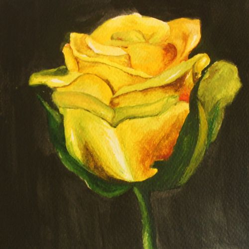 yellow rose, 8 x 12 inch, alna tony,8x12inch,drawing paper,paintings,flower paintings,realistic paintings,love paintings,paintings for dining room,paintings for living room,paintings for bedroom,paintings for office,paintings for bathroom,paintings for kids room,paintings for hotel,paintings for kitchen,paintings for school,paintings for hospital,watercolor,paper,GAL02025031843