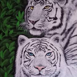 the white wild , 12 x 16 inch, anu radha,12x16inch,canvas,paintings,wildlife paintings,paintings for living room,paintings for hotel,acrylic color,GAL02033231956