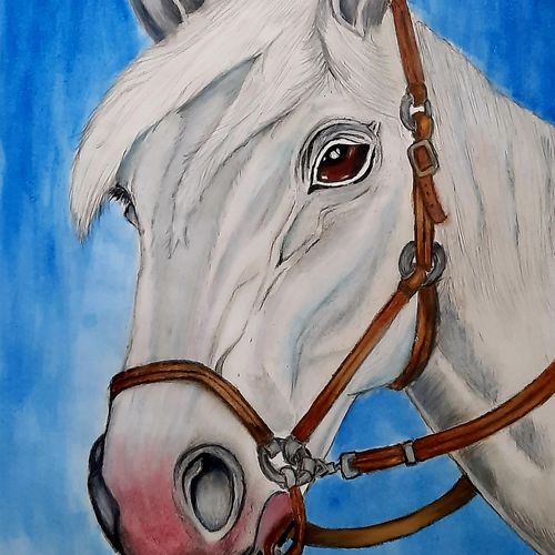 the horse -  sign of victory , 8 x 12 inch, vishal thakur,8x12inch,thick paper,paintings,animal paintings,paintings for dining room,paintings for living room,paintings for bedroom,paintings for office,paintings for kids room,paintings for hotel,paintings for school,paintings for hospital,oil color,watercolor,paper,GAL02044732056