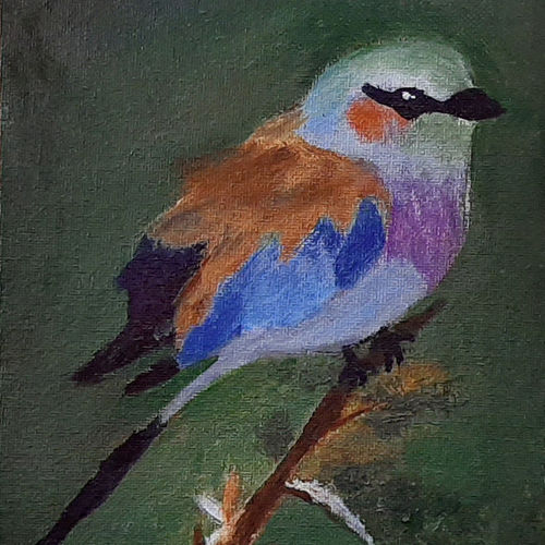 the bird, 6 x 8 inch, tejal bhagat,6x8inch,canvas board,paintings,wildlife paintings,nature paintings | scenery paintings,photorealism paintings,realism paintings,animal paintings,realistic paintings,kids paintings,paintings for dining room,paintings for living room,paintings for bedroom,paintings for office,paintings for bathroom,paintings for kids room,paintings for hotel,paintings for kitchen,paintings for school,paintings for hospital,acrylic color,GAL02041532088