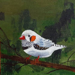 cute white bird, 8 x 8 inch, tejal bhagat,8x8inch,canvas board,paintings,wildlife paintings,figurative paintings,nature paintings | scenery paintings,animal paintings,realistic paintings,children paintings,kids paintings,paintings for dining room,paintings for living room,paintings for bedroom,paintings for office,paintings for bathroom,paintings for kids room,paintings for hotel,paintings for kitchen,paintings for school,paintings for hospital,acrylic color,GAL02041532089
