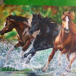 horse, 30 x 20 inch, jyoti manani,30x20inch,canvas,horse paintings,acrylic color,oil color,GAL02051932159